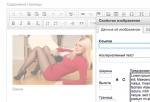 Yii: Расширение ECKEditor = Связка ckeditor + kcfinder (визуальный редактор с бесплатным файловым менеджером)