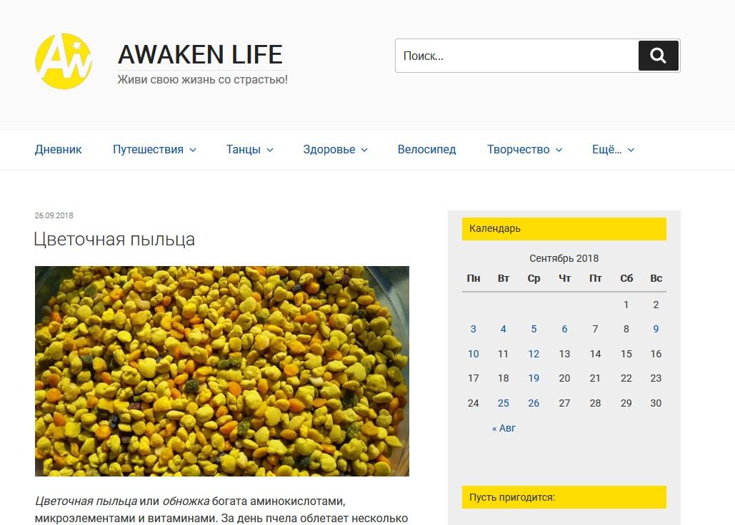 блог Александра Исаева Разбуди жизнь Awaken life